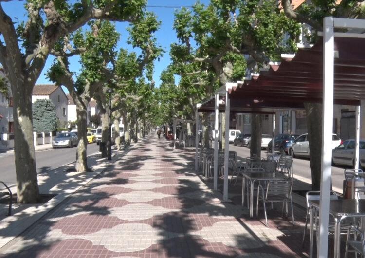 La Paeria de Balaguer planta nous arbres a la ciutat