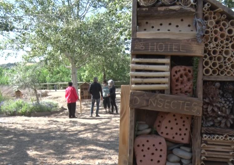 Instal·len a Montgai quatre hotels per a insectes