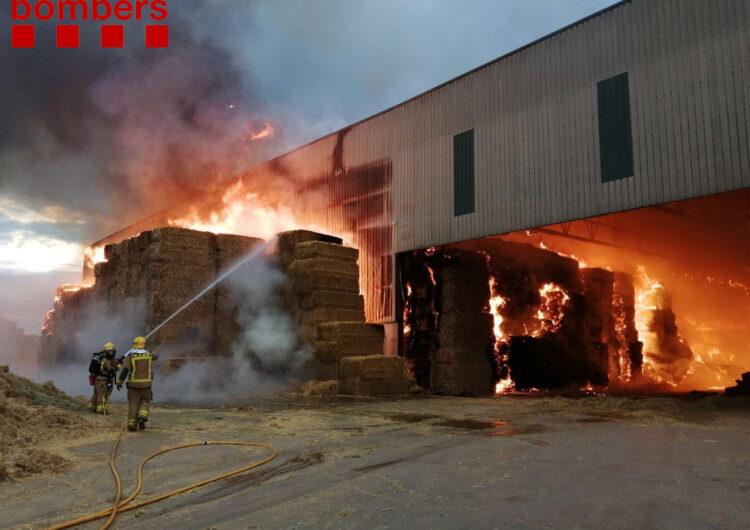 El Bombers de la Generalitat treballen en l'extinció d'un incendi a Vallfogona de Balaguer