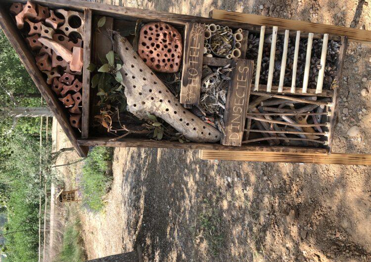 Instal·len refugis pels insectes a Montgai
