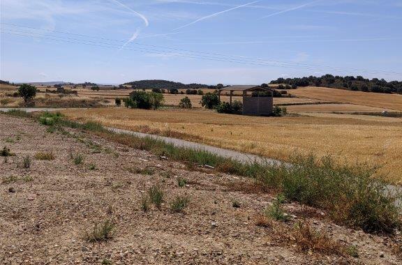 La Diputació de Lleida ha iniciat les actuacions per adequar un mirador panoràmic al municipi de Bellmunt d'Urgell