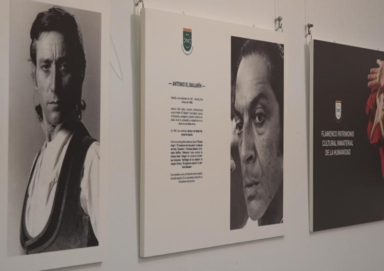 La història del Flamenc exposada a la Paeria de Balaguer